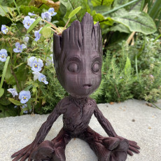 Picture of print of Baby Groot Succulent Planter