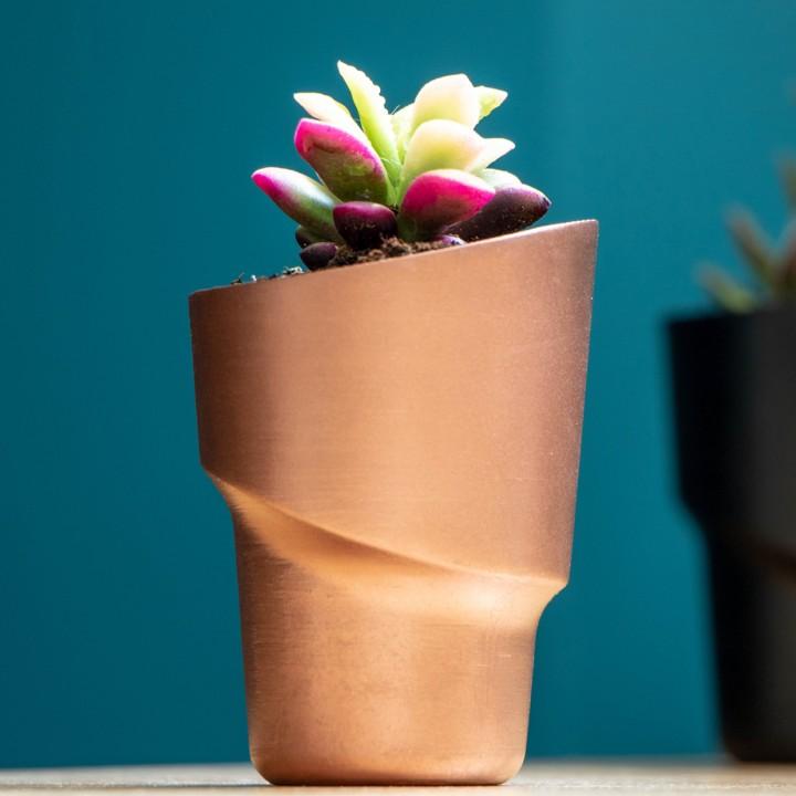 The Fancy - Flower pot