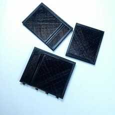 Picture of print of Moldes