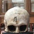 Skull Cast of Robert Burns image
