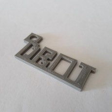 Picture of print of DBOT Key chain