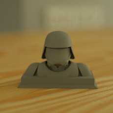 Snow Trooper Bust