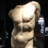 Torso of a Young Male image