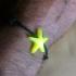 Starfish pendant/bracelet/keychain image