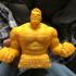 Hulk bust print image