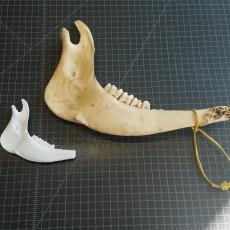 Buffalo Jawbone Scan - Native American Weapon