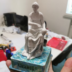 Picture of print of Statue of Urania