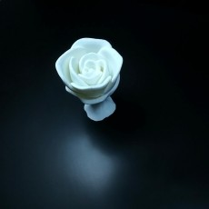 Picture of print of Rose