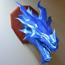 Skyrim ice Dragon wall Trophy