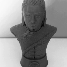 Picture of print of Arya Stark Bust  - Game of Thrones