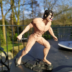 Picture of print of Eren - Attack on Titan