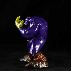 Picture of print of The MAXX