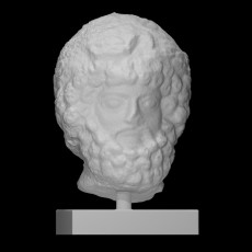 Head of wreathed bearded man