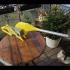 BBQ Fan Extension for Gearbox 256 / Grillgebläse Erweiterung für Getriebe 256 image
