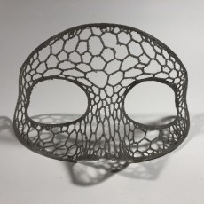 Picture of print of mask
