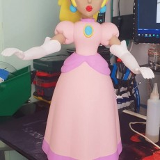 Picture of print of Princess Peach from Mario Games - multi-color Dieser Druck wurde hochgeladen von Ismael Zahra