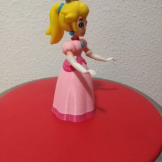 Picture of print of Princess Peach from Mario Games - multi-color