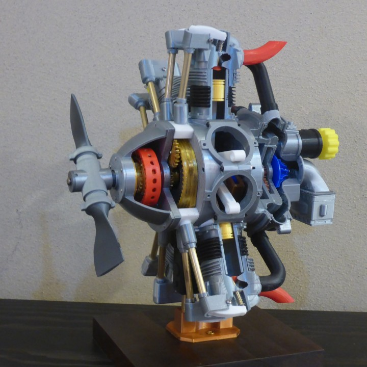 Radial Engine, 7-Cylinders, Cutaway