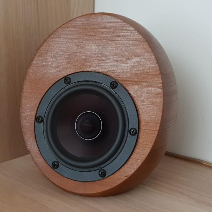Egg Shaped Speaker with Dayton RS100