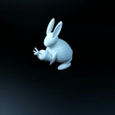 Picture of print of rabbit
