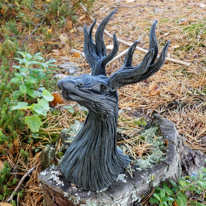 Stagroot