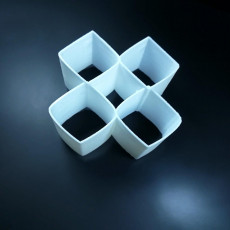 Picture of print of Square/Circle Illusion