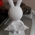 Super rabbit image