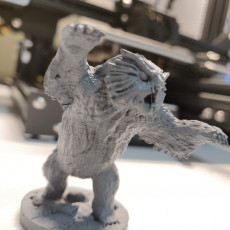 Picture of print of Owl beast miniature