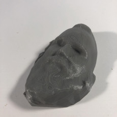 Picture of print of Untitled 3D Scan 2018-10-05