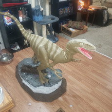 Picture of print of Velociraptor This print has been uploaded by Timothy Bradley