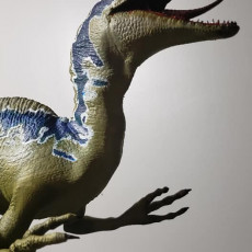 Picture of print of Velociraptor