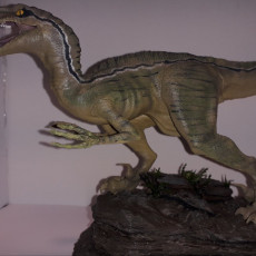 Picture of print of Velociraptor This print has been uploaded by Rick