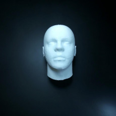 Picture of print of Human Head More detailed