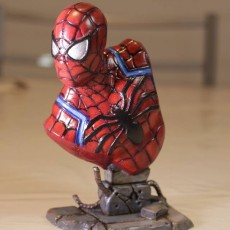 Picture of print of Spider-Man bust