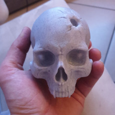 Picture of print of Vampire Skull This print has been uploaded by riccardo zaccarelli
