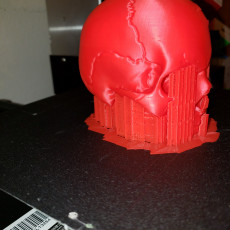 Picture of print of Vampire Skull