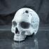 Vampire Skull image