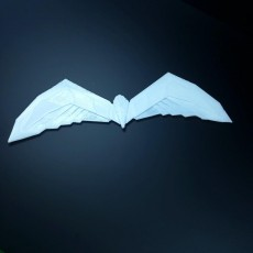 Picture of print of robin batarang arkham style