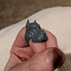 Picture of print of Dog Ring for 3d printing