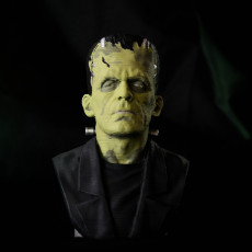Picture of print of Frankenstein Monster This print has been uploaded by Literal 3D