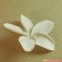 flowers: Plumeria - 3D printable model image