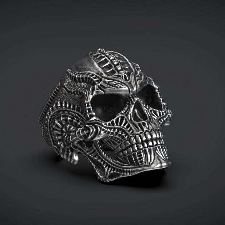 3D Printable Ring Skull Biomechanics STL 3d Model For 3d