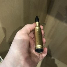 Picture of print of Bullet / Joint case