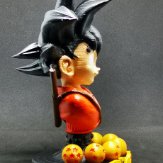 Picture of print of Goku kid