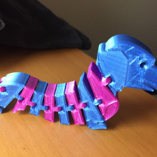Picture of print of Flexi-Hound