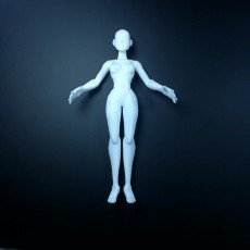 Picture of print of Stylized Female
