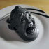 Decapitated Screaming Head image
