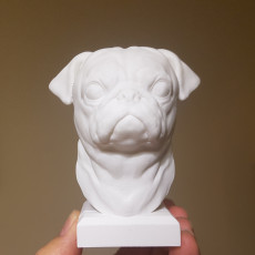 Picture of print of Pug Statue
