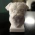 Pug Statue image