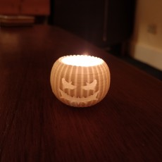 Picture of print of Pumpkontainer - 3D printed pumpkin container! 这个打印已上传 Romain B